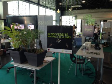 """Biodiversity as a forest sentinel"" stand (BioGeCo) - Photo credits LabEx COTE"